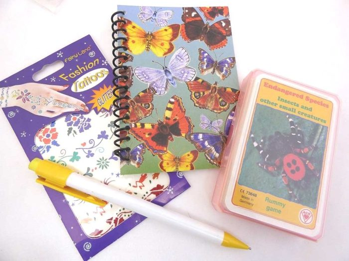 Butterfly and Bugs Party Bag