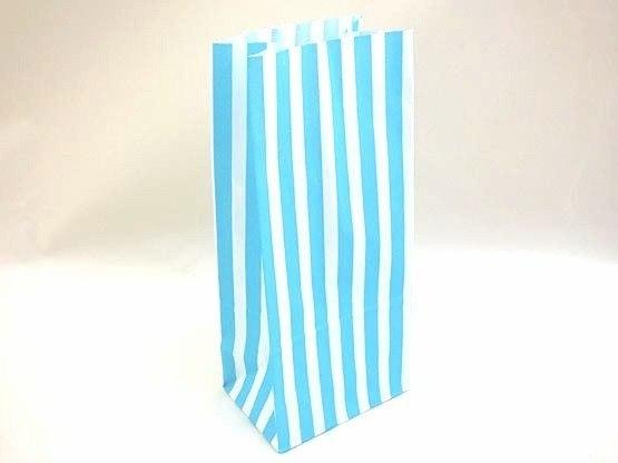 Blue Candy Stripe Paper Bag