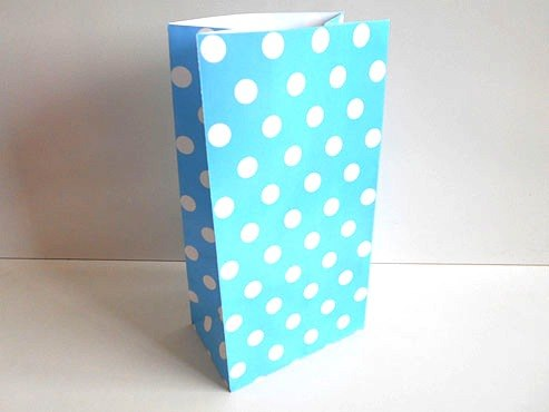 Blue Polka Dot Paper Bag (25x13x8)