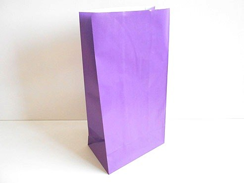 Purple Paper Party Bag