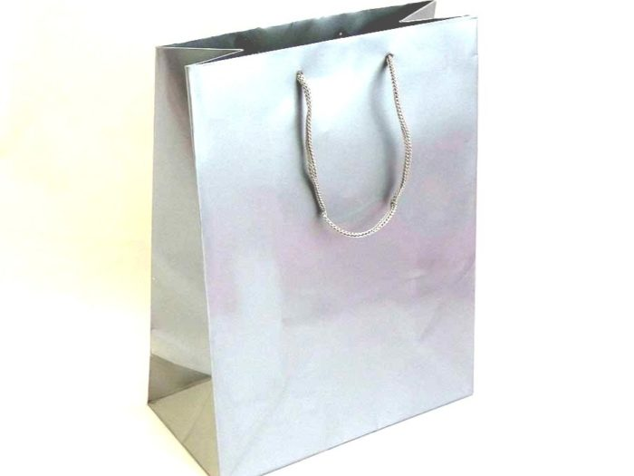 Large Silver Gift Bag (23x18x9)