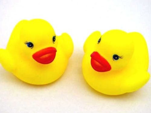 Rubber Duckling