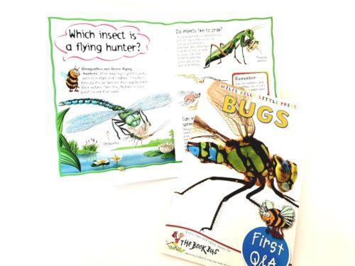 Bugs - Miles Kelly Little Press