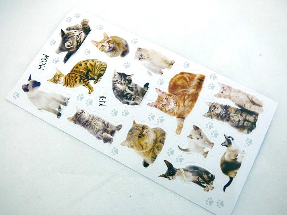 Mini Stickers - Cats & Kittens
