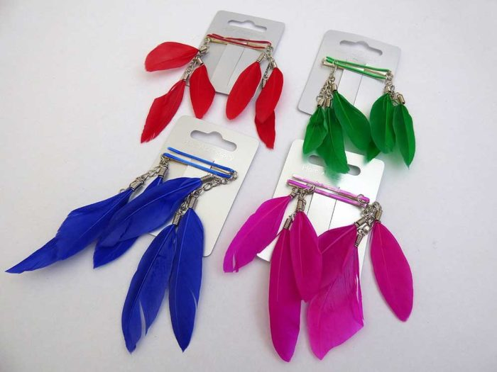 Pair of Bright Feather Hair Grips