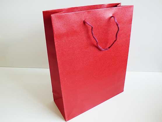 Large Red Kraft Gift Bag