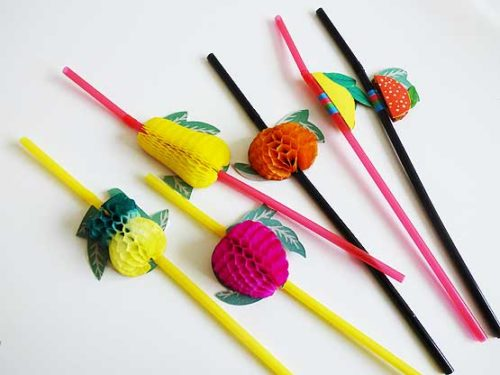 3D Fruit Straw